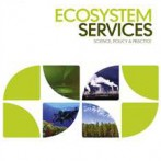 Peer-reviewed paper published: Renewable energy and ecosystem services